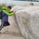 Ein Beschäftigen des LHW versucht, einen großen Stein, der am Elbstrand liegt, wegzuschieben.